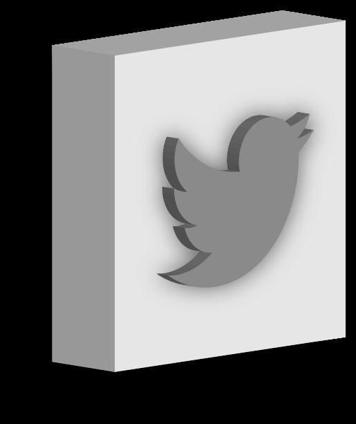Twitter graphic design icon